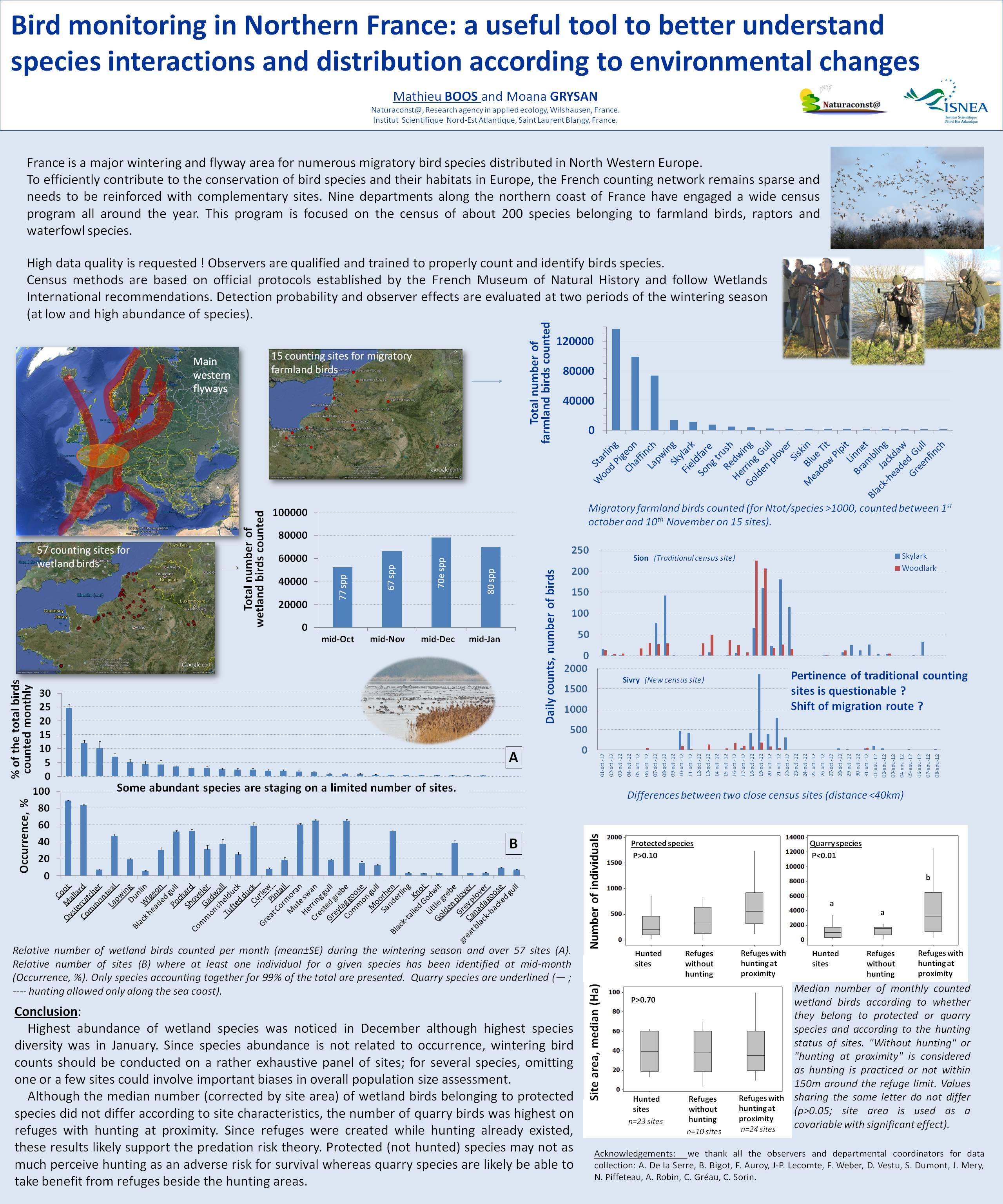 Le suivi des oiseaux dans le Nord de la France : un outil utile pour mieux comprendre les interactions entre les espèces et leur distribution en fonction des changements environnementaux.