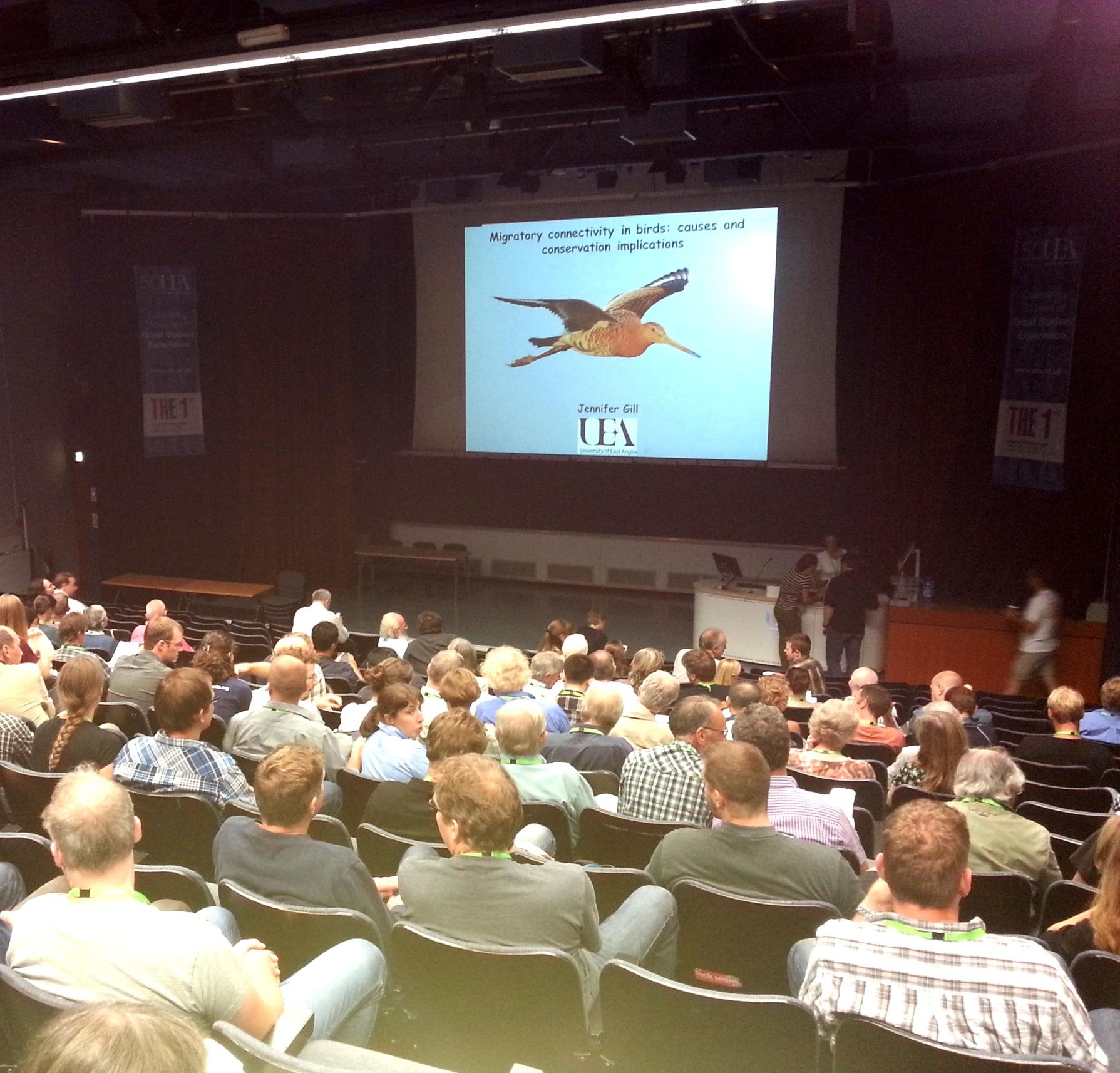 L'ISNEA au Congrès Européen d'Ornithologie !