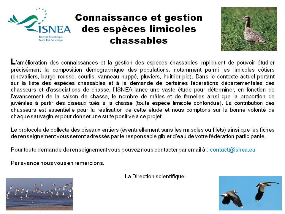 Ouverture de la chasse des limicoles côtiers : Chasseurs n'oubliez pas de participer à l'étude nationale lancée par l'ISNEA !