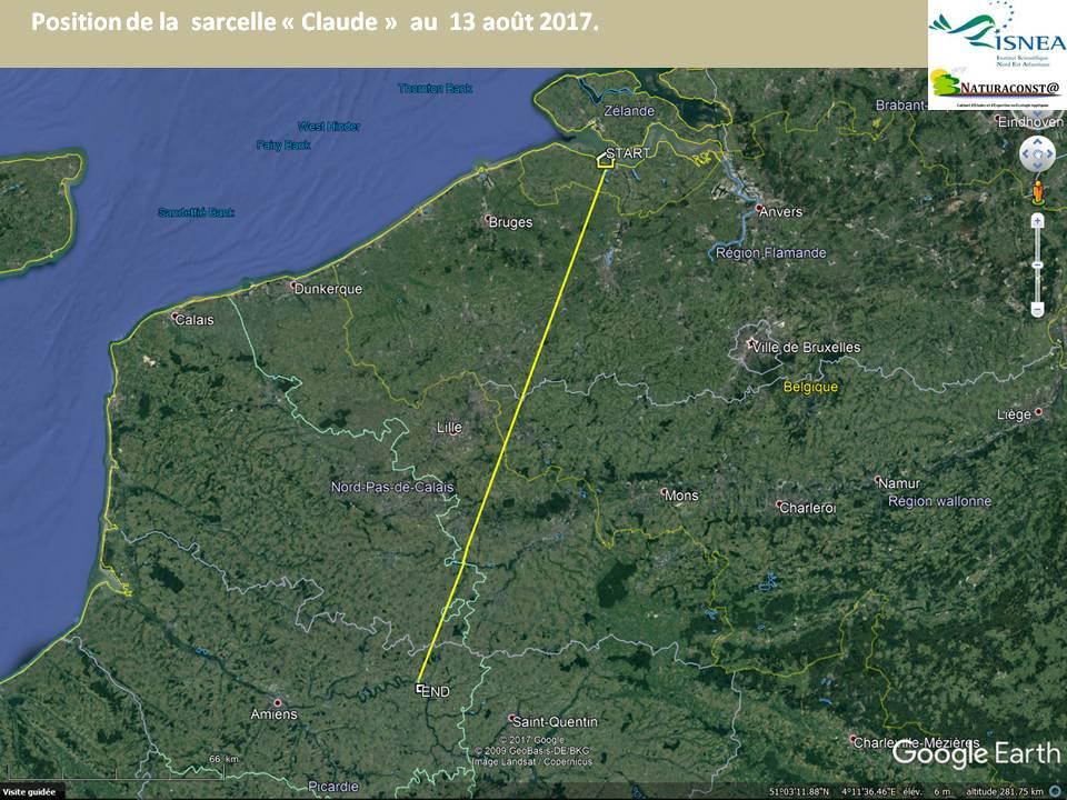 Retour en France du mâle sarcelle «Claude»