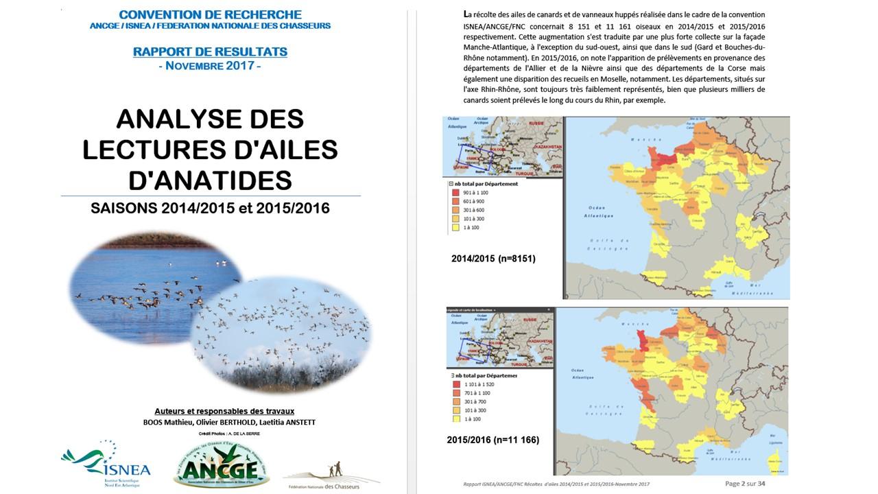 Rapport des lectures d'ailes de canards et vanneaux 2014-2015-2016